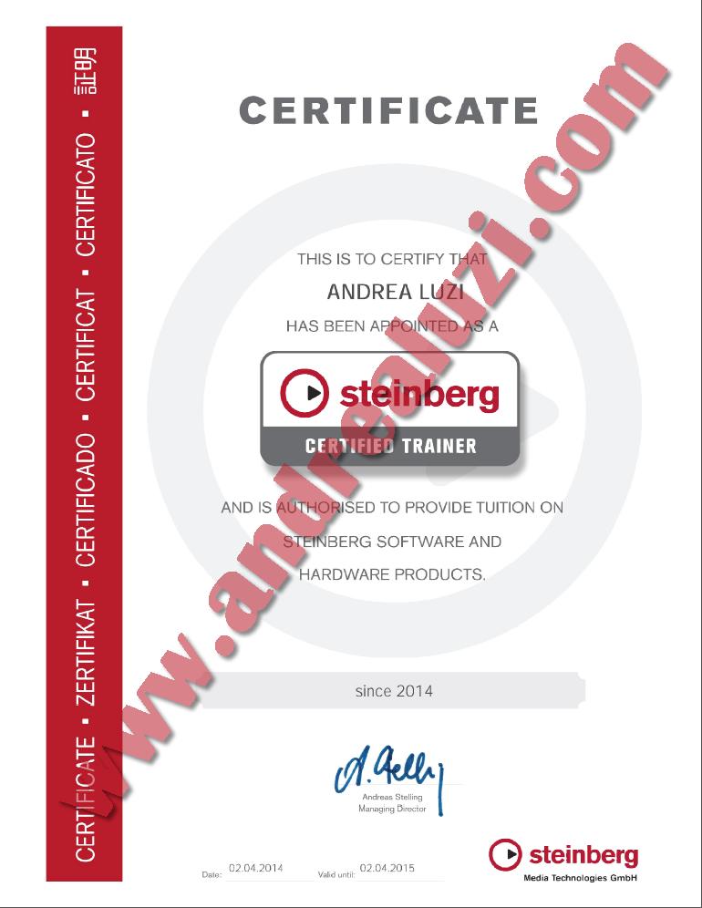 Andrea Luzi Steinberg Certificate
